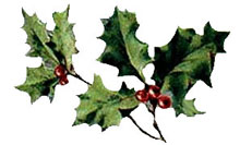 Vintage Christmas Clipart - Bough of Holly