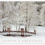 Featured Holiday Card