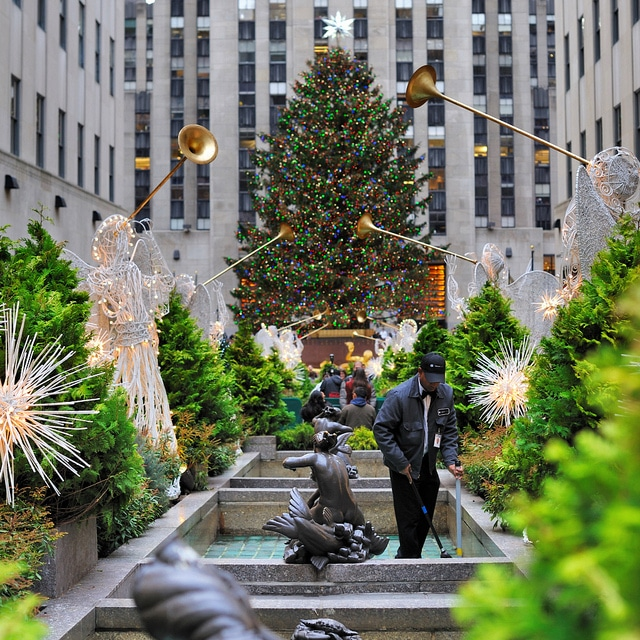 Spectacular Christmas Trees You Have To See
