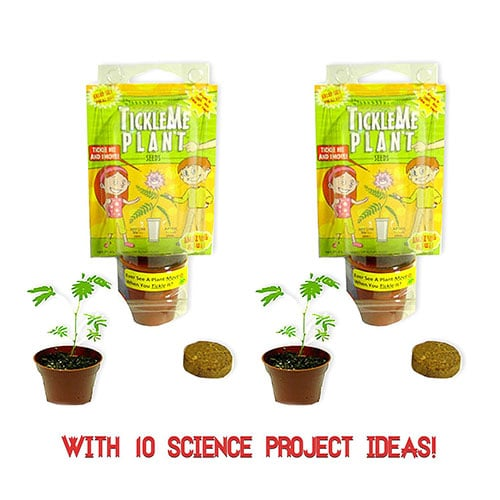 TickleMe Plant Party Favors (2) per bundle