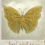 butterfly-1143401_1280
