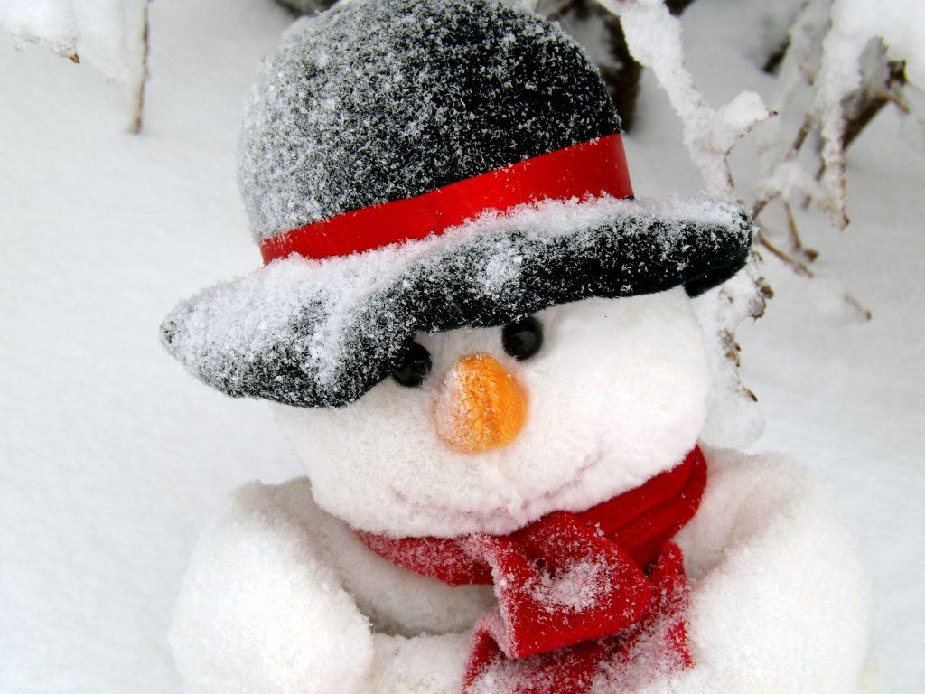 snowman-1145331_1920