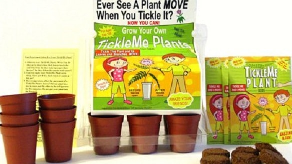 tickle me plant Christmas gifts for kids